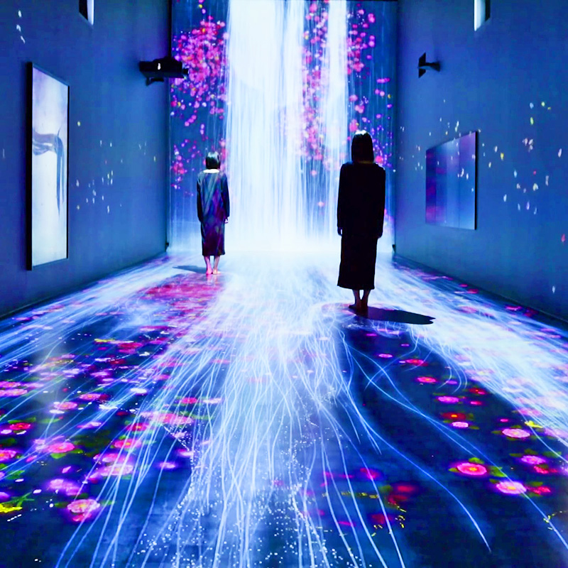 "teamLab - Pace Gallery - ""Transcending Boundaries"""